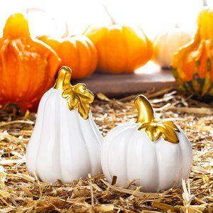 Pumpkin Pair Salt & Pepper Ceramic Shakers